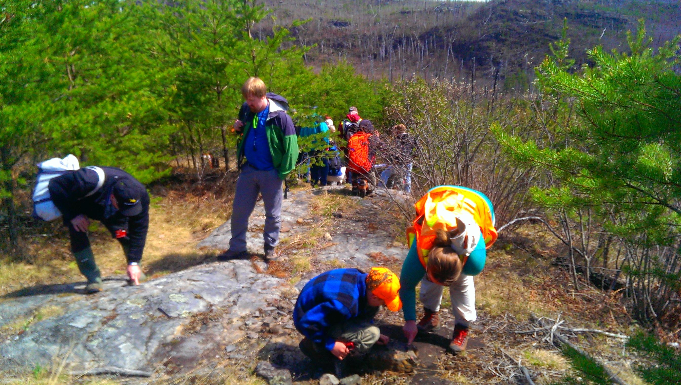 Gunflint trail stromatolites
